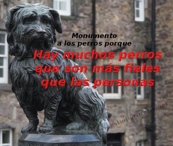 Perros fieles compartir imagen